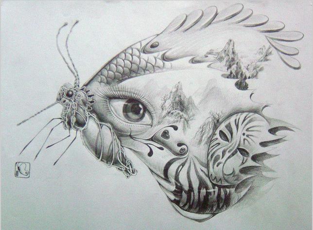 简单手绘蝴蝶铅笔画