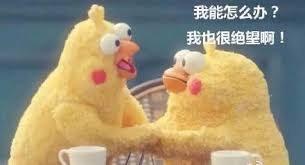 #心得 清大服科 正取推甄分享-研究所