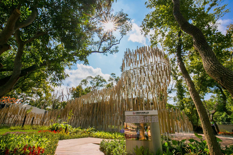 全球首座全紙材花博石虎裝置藝術,2位幕後策畫者畢業於這所大學-中華大學
