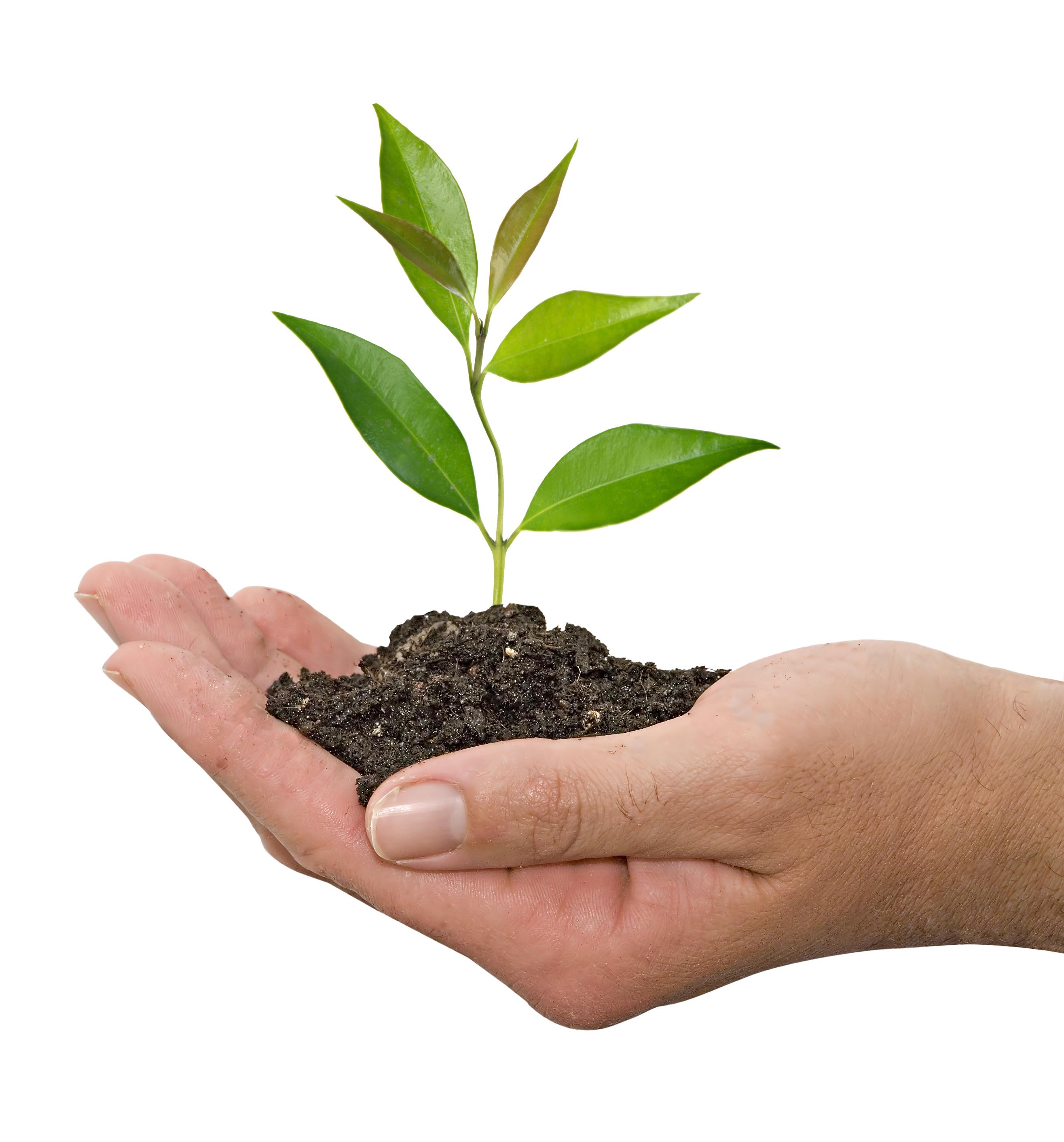 南華大學設綠色科技學程 產官學合作共推永續家園-永續家園