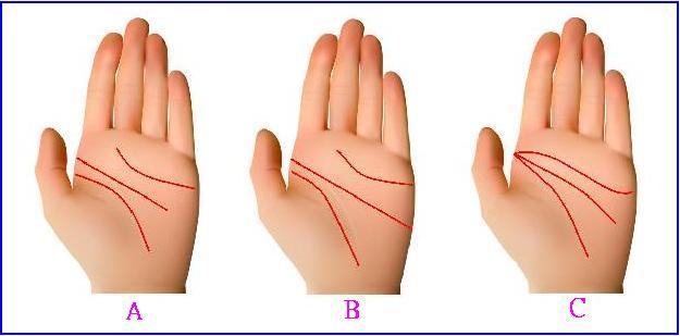 川字掌的手相特徵在於生命线