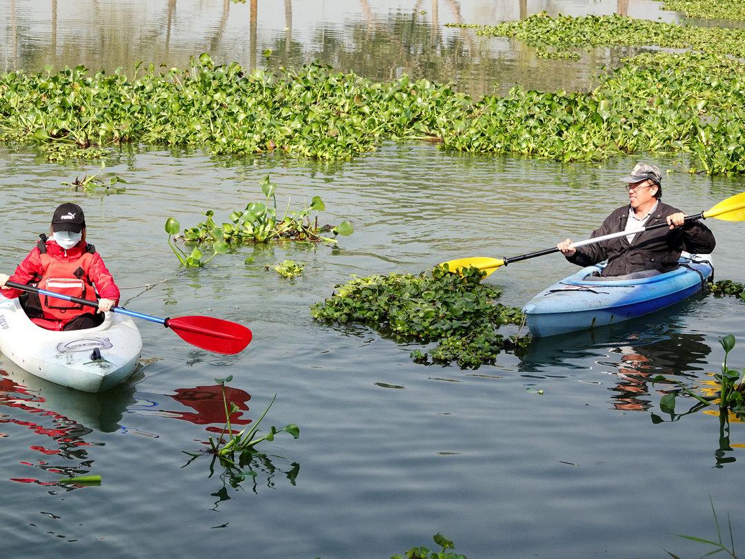 走入在地生態體驗 中正師生划獨木舟清除頂員林埤塘布袋蓮-人口老化