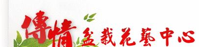 傳情盆栽花藝中心